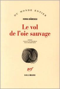 badescu_vol_oie_sauvage